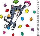 등산을하는 고양이 39429817