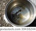 Kasumi salamander -1 39430244