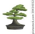 Bonsai tree in pot 39434032