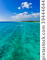 海 大海 海洋 39444644