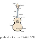 Infographic with hand drawn ukulele 39445228