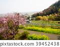 기요 미즈 데라 마을의 풍경 39452438