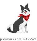 farm animal - dog 39455521