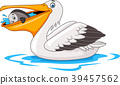 Cartoon pelican eating fish   39457562