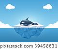 Orca or the killer whale sleeping on the iceberg. 39458631