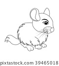 Cartoon chinchilla outline rodent isolated 39465018