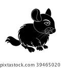 Cartoon chinchilla silhouette isolated on white 39465020