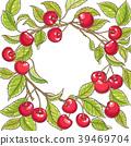 水果 樱桃 矢量 39469704
