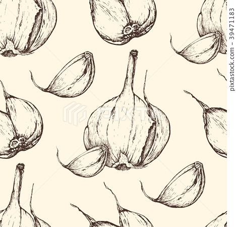 Vector garlic handdrawn seamless pattern in the 39471183