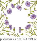 cornflower vector frame 39479937