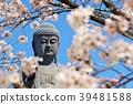 盛開的櫻花和Ushiku Daibutsu 39481588