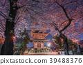 이케 가미 혼 몬지의 벚꽃 오층탑 39488376