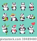 panda bearcat bamboo 39489480