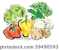 蔬菜 39490593