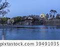 nagoya castle, cherry blossom, spring 39491035