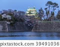 nagoya castle, cherry blossom, spring 39491036