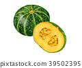 南瓜 水彩画 蔬菜 39502395
