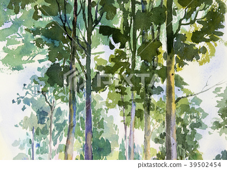 Environmental concept, Tree in forest. 39502454