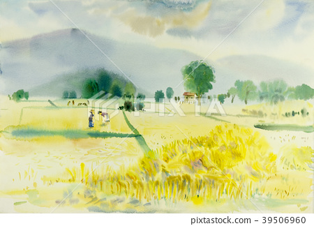 Watercolor painting colorful of rice field. 39506960