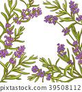 lavender plant vector frame 39508112