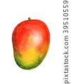 芒果 水果 水彩 39510559