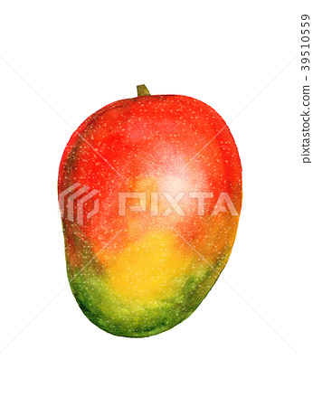 mango, mangoes, fruit 39510559