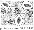 Honeydew Melon and Diplocyclos Palmatus Fruits 39511432