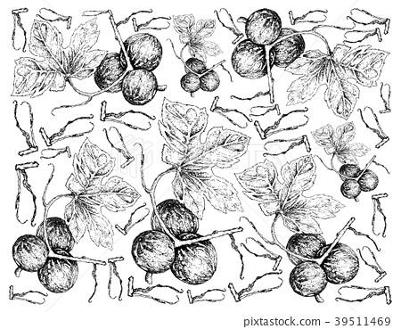 Background of Diplocyclos Palmatus Fruits 39511469