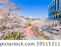 Tokyo rows of cherry blossoms in Tokyo Midtown 39515311