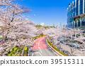 도쿄 미드 타운의 벚꽃길 39515311