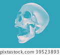 Perspective skull illustration on blue BG 39523893