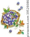 藍莓 水果 漿果 39526086