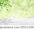 초록, 그린, 보케 39531298