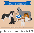 Dogs by country of origin. Scottish dog breeds. 39532470