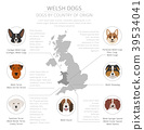 Dogs by country of origin. Walsh dog breeds 39534041