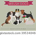 Dogs by country of origin. Walsh dog breeds 39534046