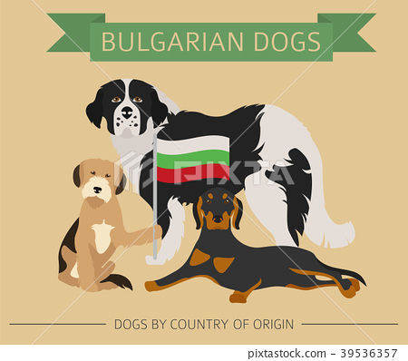 Dogs by country of origin. Bulgarian dog breeds 39536357