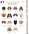 Dogs by country of origin. French dog breeds 39538192