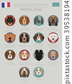Dogs by country of origin. French dog breeds 39538194