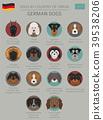 dog, German, Germany 39538206
