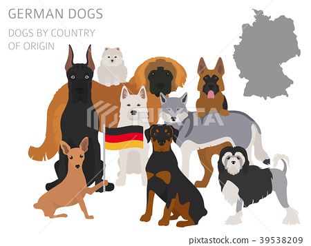 Dogs by country of origin. German dog breeds.  39538209