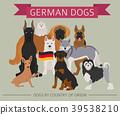 dog, German, Germany 39538210