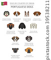 dog, Portugal, infographic 39538211