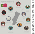 dog, Portugal, infographic 39538214