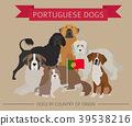 dog, Portugal, infographic 39538216