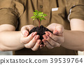 Woman's hands with a young plant 39539764