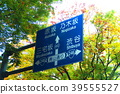 traffic sign, traffic signs, road sign 39555527