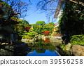 adachi ward, tokyo, autumnal 39556258