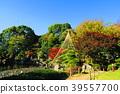 adachi ward, tokyo, autumnal 39557700