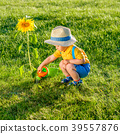 One year old baby boy using watering can for sunflower 39557876